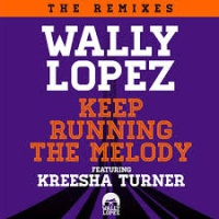 Wally Lopez ft. Kreesha Turner - Dig It (Stefano Noferini Rmx)