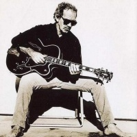 J.J. Cale - The Woman That Got Away
