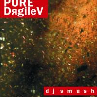 PURE-DяgileV - CD3 (BONUS)