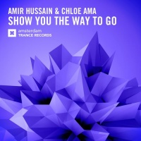 Amir Hussain - Show You The Way To Go (Single)