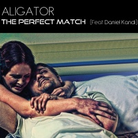The Perfect Match (Single)