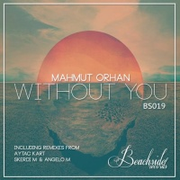 Without You (Aytac Kart Rmx)