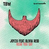 Joyzu - Hear You Say (Original Mix)