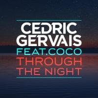 - Through The Night (CID Remix)