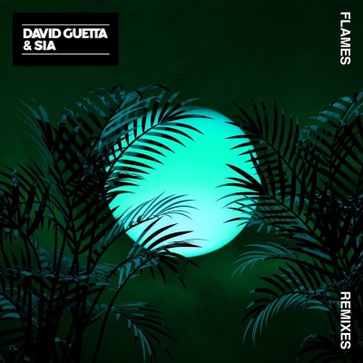 David Guetta - Flames (Remixes)