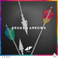 Broken Arrows (M-22 Remix)