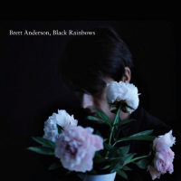 - Black Rainbows
