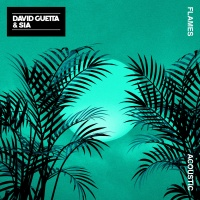 David Guetta - Flames (Acoustic)