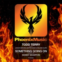 Todd Terry - Something Going On (Sonny Wharton Remix)