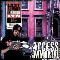 Access Immortal - Robbin Hood Theory