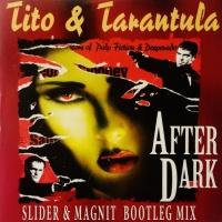 After Dark (Slider & Magnit Bootleg Mix)