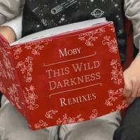 This Wild Darkness (CYA Remix)