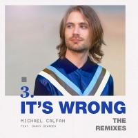 It's Wrong (Remixes)