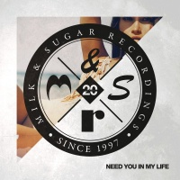 Need You in My Life (Superlover Remix)