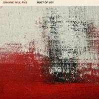 Dwayne Williams - La-Musique-De-Lame