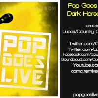 Katy Perry - Dark Horse (Acoustic Version)