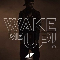 Wake Me Up (Acoustic Version)