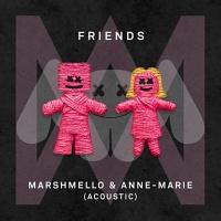 Friends (Acoustic Mix)